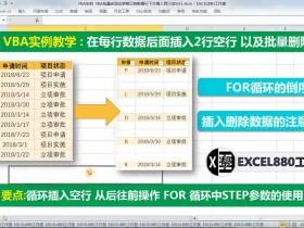 Excel vba在每行数据后面插入2行空行 以及批量删除空行 插入空行代码技巧【VIP视频教程】VBA实例009