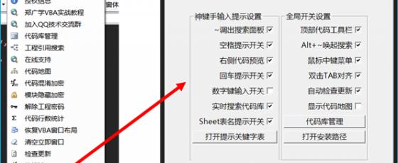 11. VBA代码助手选项设置  VBA代码助手使用说明