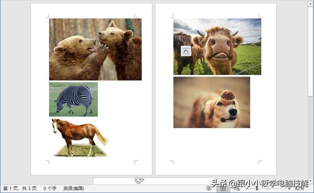 在Word中批量插入多张图片,如何让图片统一缩小且清晰度不变? 图文